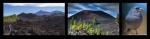 Vulkane und Tiere, auf meinen Wandertouren zu entdecken.
